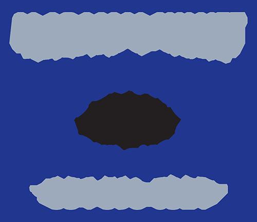 Reese & Reese Attorneys, P.C. Logo
