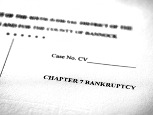 Chapter 7 bankruptcy case document
