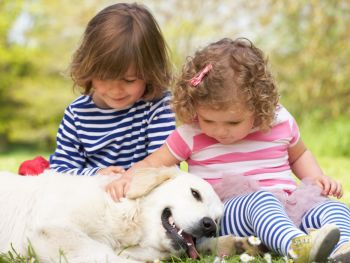 Two children petting a dog