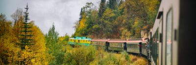 Train in colorful trees